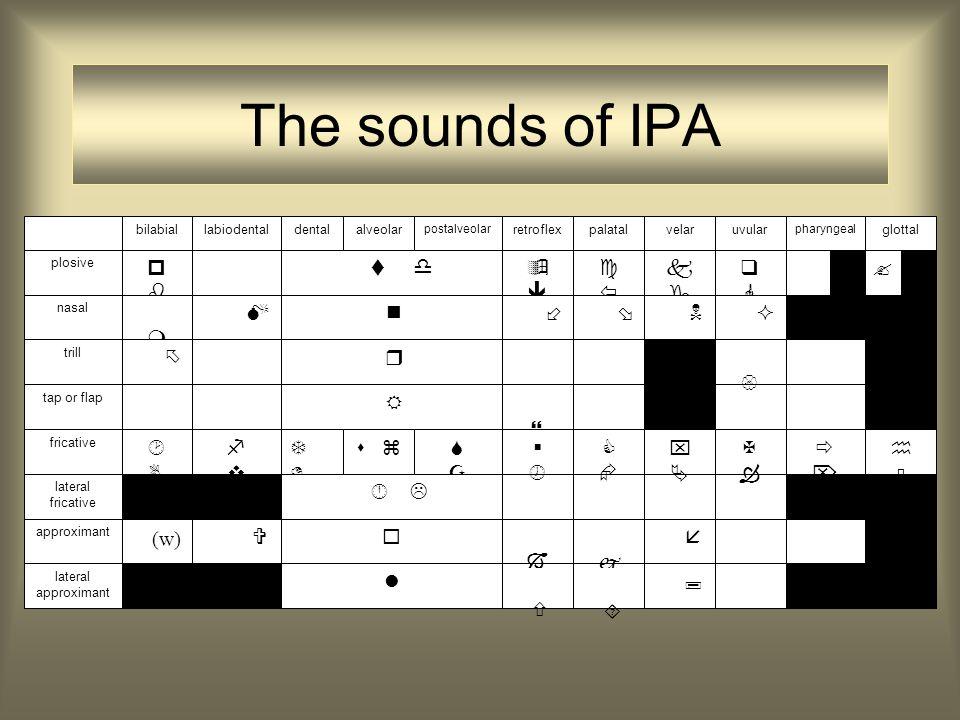 Taken fonoloog welke klanksegmenten heeft de taal? vb. Nederlands kent geen interdentalen
