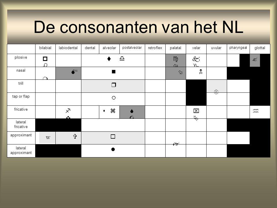 De consonanten van het NL                     glottalalveolardentalbilabiallabiodental pharyngeal velarpalatal