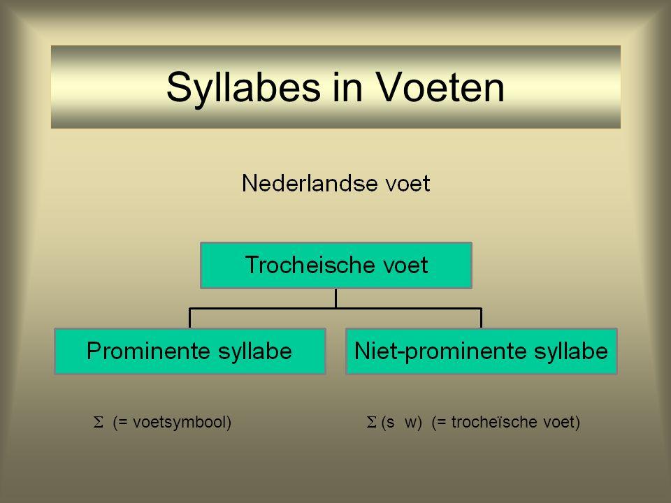 Syllabes en Voeten Syllabes worden verenigd in voeten: parameter setting: jambische of trocheïsche voet vb. jambische voet: Araucanian(w s) vb. troche