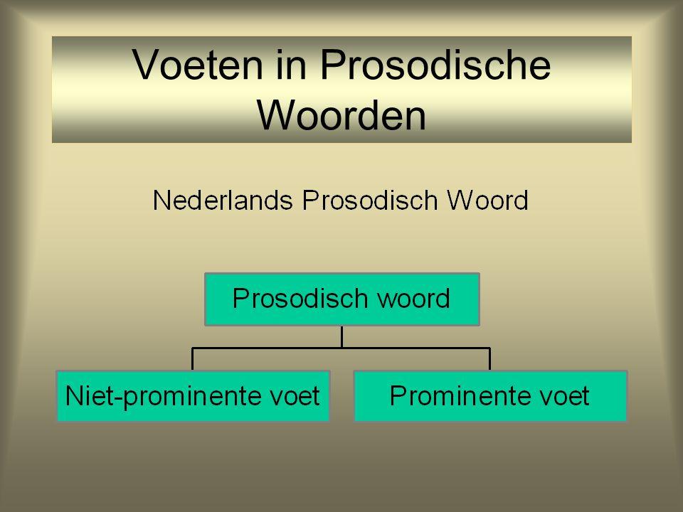 Aanwijzingen voor Nederlandse Trocheïsche Voet Kindertaalfouten 1;62;6