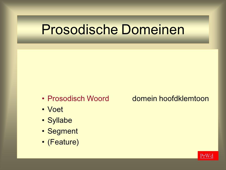 Prosodische Domeinen Voetritmische structuur Syllabe Segment (Feature)