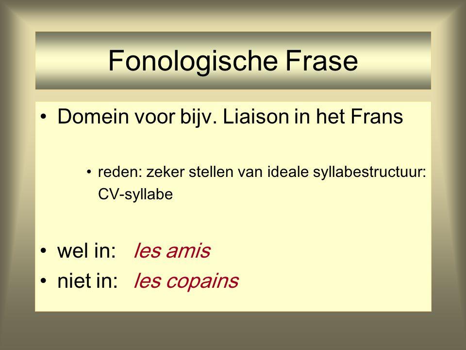 Prosodische Domeinen Fonologische Frasedomein liaison (Frans) (Clitic Group) Prosodisch Woord Voet Syllabe Segment (Feature)