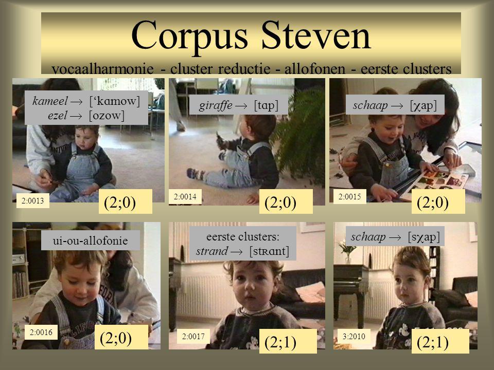 Corpus Steven vocaalharmonie - cluster reductie - allofonen - eerste clusters (2;0) 2:00142:0015 (2;0) 2:0013 kameel  ['  ] ezel  [  ] giraffe  [  ]schaap  [  ] (2;0) (2;1) 2:0016 2:00173:2010 ui-ou-allofonie schaap  [  ] eerste clusters: strand  [  ]