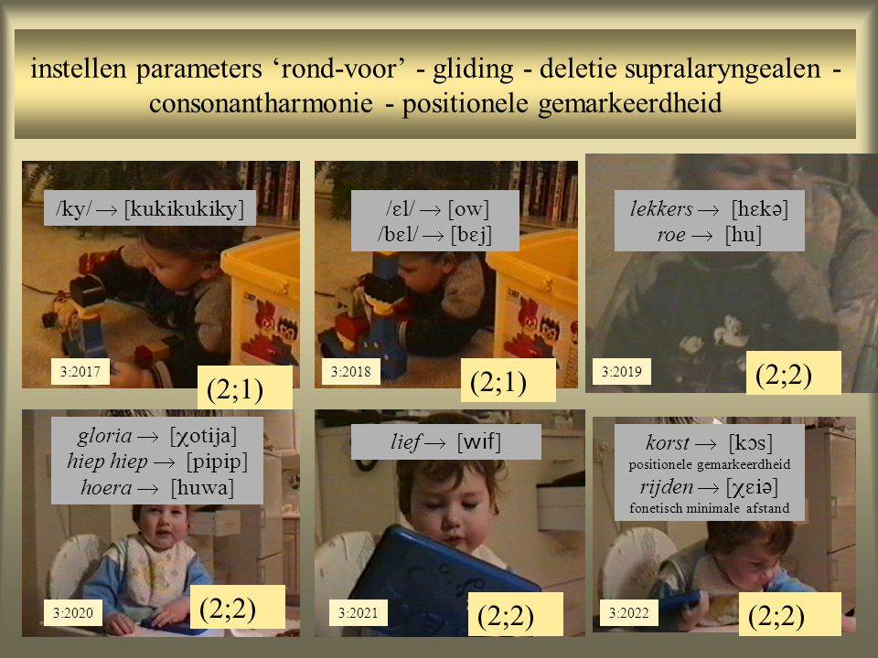 instellen parameters 'rond-voor' - gliding - deletie supralaryngealen - consonantharmonie - positionele gemarkeerdheid (2;2) (2;1) 3:20183:2019 (2;1) 3:2017 /  /  [  ] /  /  [  ] /  /  [  ] lekkers  [  ] roe  [  ] (2;2) 3:20203:20213:2022 gloria  [  ] hiep hiep  [  ] hoera  [  ] lief  [  ] korst  [  ] positionele gemarkeerdheid rijden  [  ] fonetisch minimale afstand