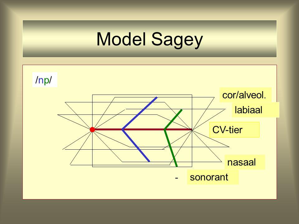 Model Sagey CV-tier nasaal coronaal /n//n/