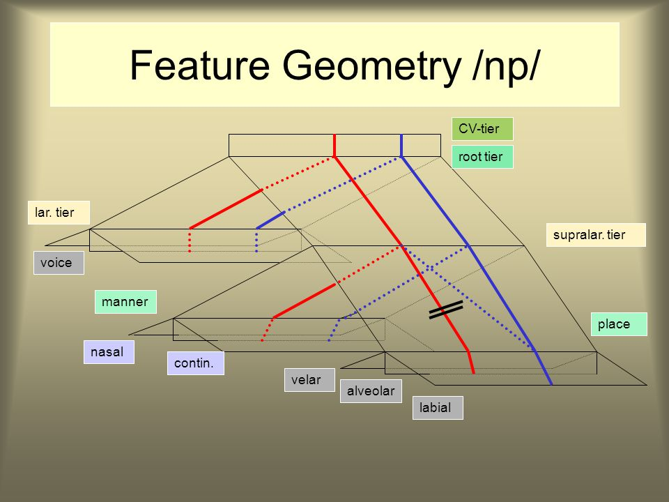 Feature Geometry /np/ CV-tier root tier lar. tier supralar.