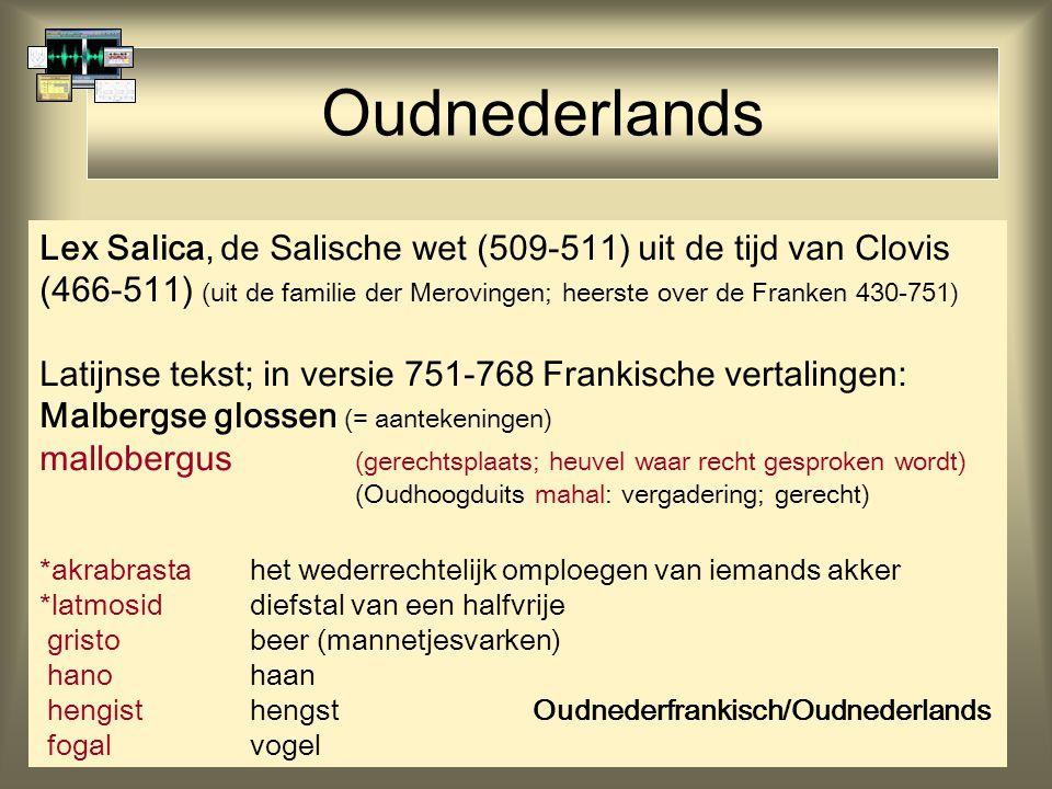 Oudnederlands Lex Salica, de Salische wet (509-511) uit de tijd van Clovis (466-511) (uit de familie der Merovingen; heerste over de Franken 430-751) Latijnse tekst; in versie 751-768 Frankische vertalingen: Malbergse glossen (= aantekeningen) mallobergus (gerechtsplaats; heuvel waar recht gesproken wordt) (Oudhoogduits mahal: vergadering; gerecht) *akrabrastahet wederrechtelijk omploegen van iemands akker *latmosiddiefstal van een halfvrije gristobeer (mannetjesvarken) hanohaan hengisthengst Oudnederfrankisch/Oudnederlands fogalvogel