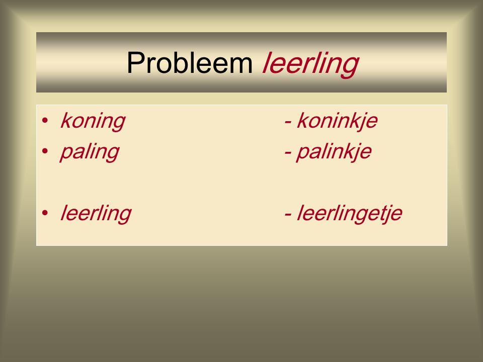 Probleem leerling koning - koninkje paling - palinkje leerling - leerlingetje