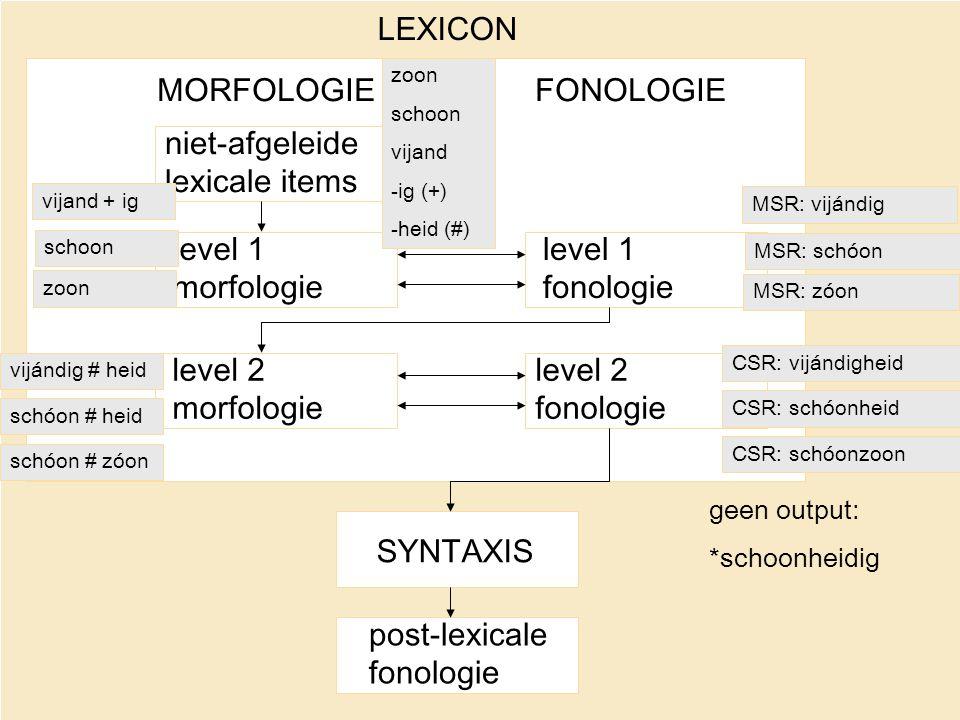 niet-afgeleide lexicale items level 1 morfologie level 2 morfologie level 1 fonologie level 2 fonologie SYNTAXIS post-lexicale fonologie MORFOLOGIEFON
