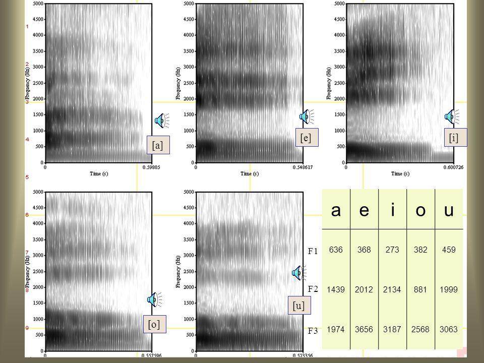 64 Formanten (in Hz) [i][a][u] F1300800300 F225001500900 F3300027002500 Formanten: vocalen