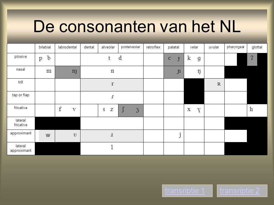 De consonanten van het NL                           glottalalveolardentalbilabiallabiodental pharyngeal velarpalatal postal