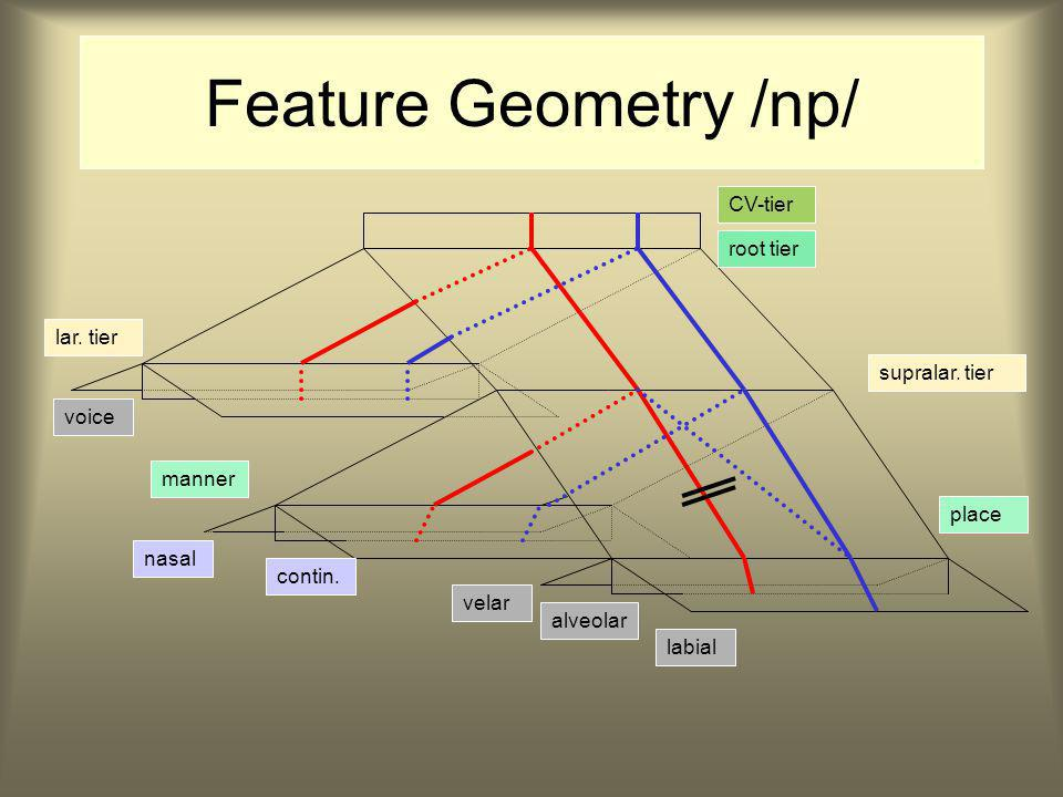 Feature Geometry /np/  [mp] CV-tier root tier lar.