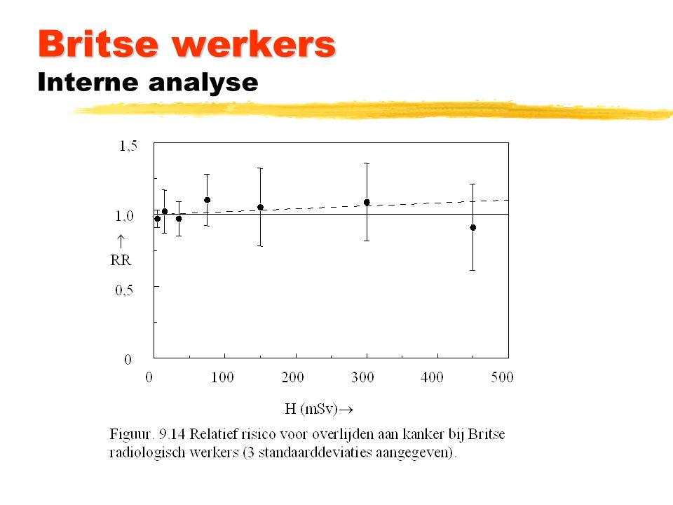 Britse werkers Britse werkers Interne analyse