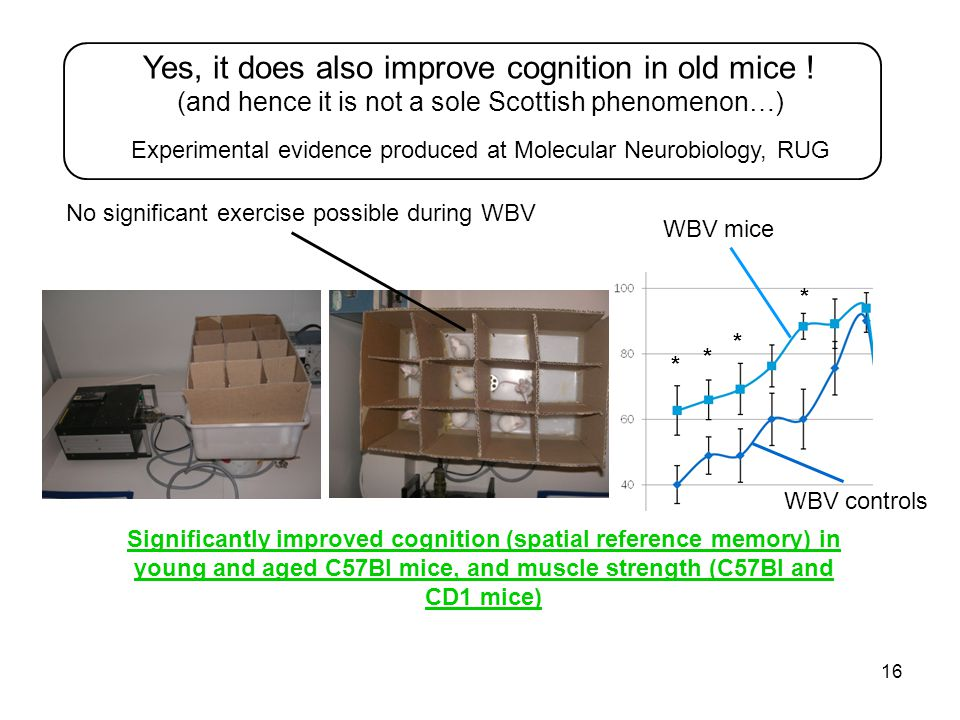 16 Yes, it does also improve cognition in old mice .