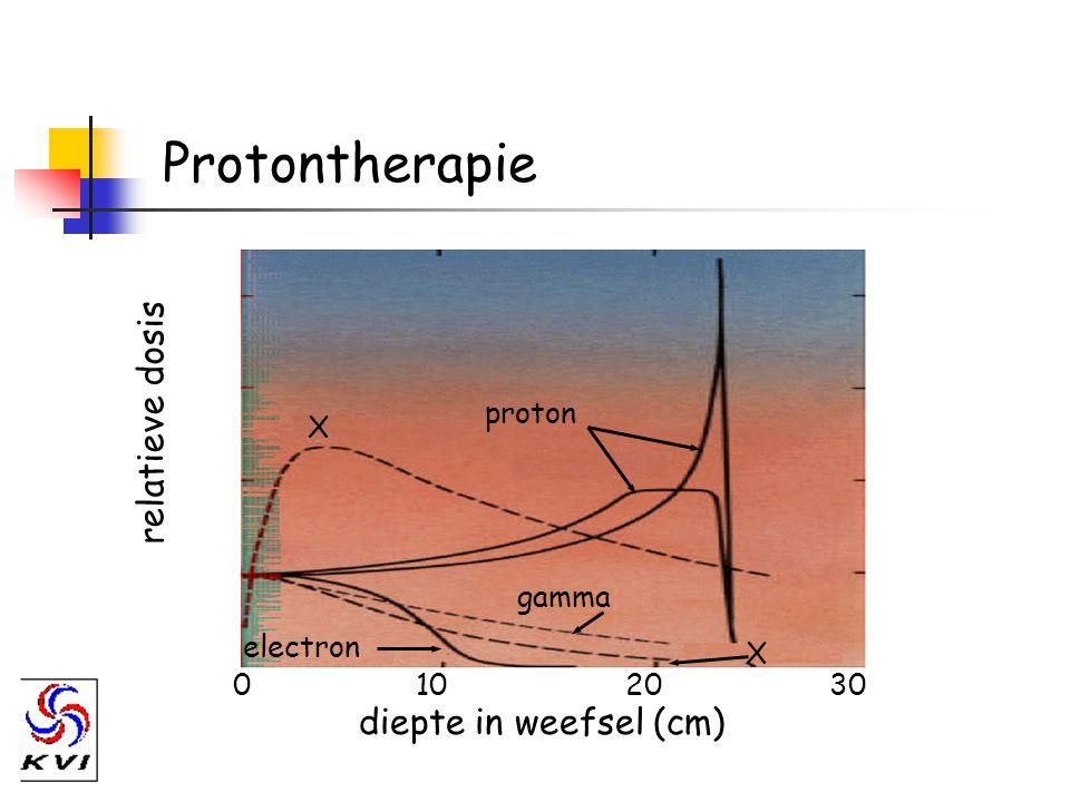Protontherapie relatieve dosis diepte in weefsel (cm) 0102030 proton X X gamma electron