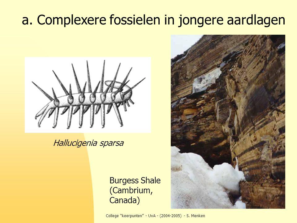 """College """"keerpunten"""" - UvA - (2004-2005) - S. Menken a. Complexere fossielen in jongere aardlagen Burgess Shale (Cambrium, Canada) Hallucigenia sparsa"""