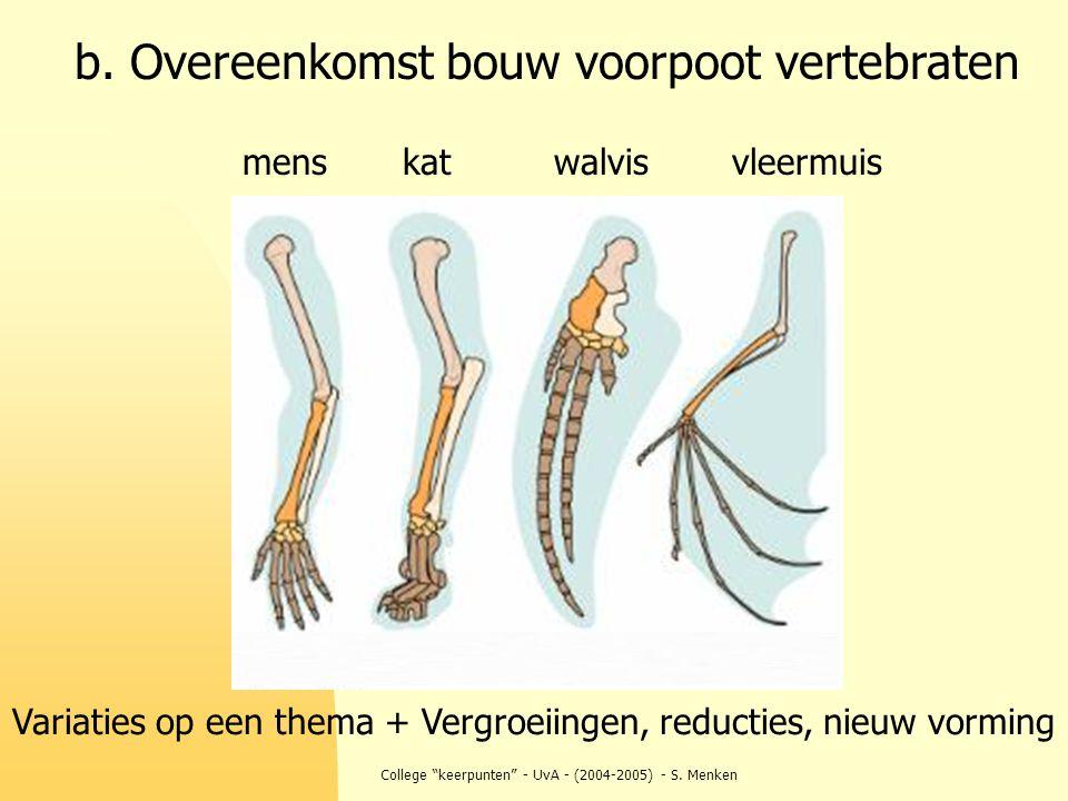 """College """"keerpunten"""" - UvA - (2004-2005) - S. Menken b. Overeenkomst bouw voorpoot vertebraten katwalvisvleermuismens Variaties op een thema + Vergroe"""