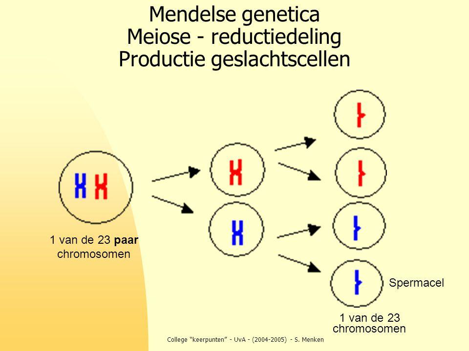 """College """"keerpunten"""" - UvA - (2004-2005) - S. Menken Mendelse genetica Meiose - reductiedeling Productie geslachtscellen 1 van de 23 paar chromosomen"""