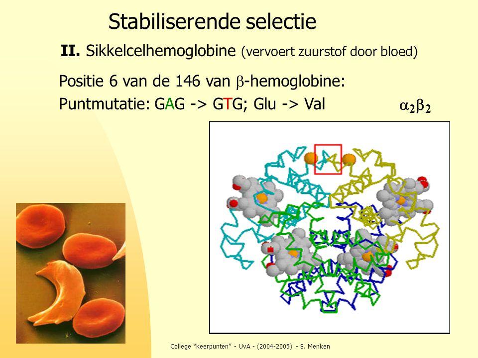 """College """"keerpunten"""" - UvA - (2004-2005) - S. Menken Stabiliserende selectie II. Sikkelcelhemoglobine (vervoert zuurstof door bloed) Positie 6 van de"""