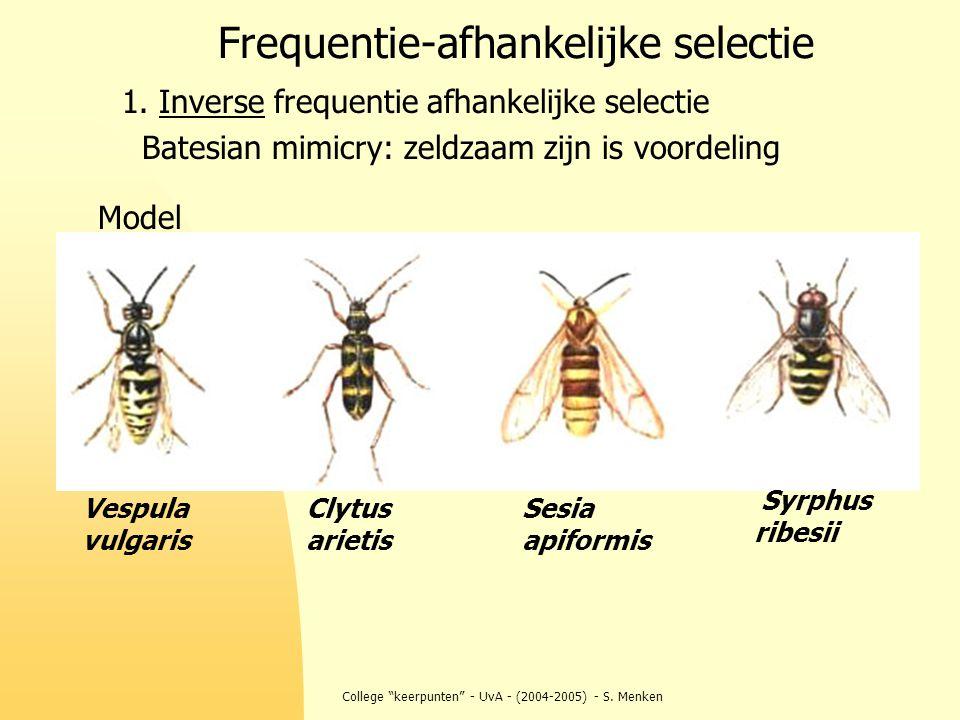 """College """"keerpunten"""" - UvA - (2004-2005) - S. Menken Frequentie-afhankelijke selectie 1. Inverse frequentie afhankelijke selectie Batesian mimicry: ze"""