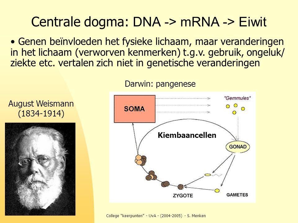 """College """"keerpunten"""" - UvA - (2004-2005) - S. Menken Centrale dogma: DNA -> mRNA -> Eiwit Genen beïnvloeden het fysieke lichaam, maar veranderingen in"""