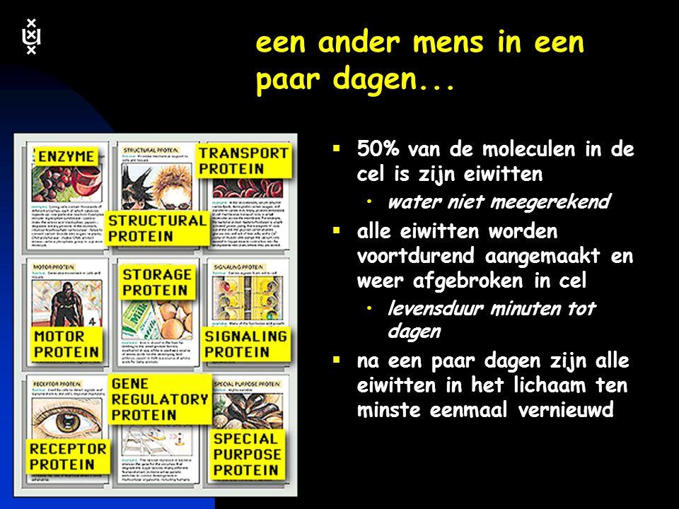 keerpunten-2 4-04 #11 menu  biologische netwerken  genetische informatie: DNA lezen van genetische taal hoeveel DNA is nodig gebruiken van DNA meer dan DNA alleen