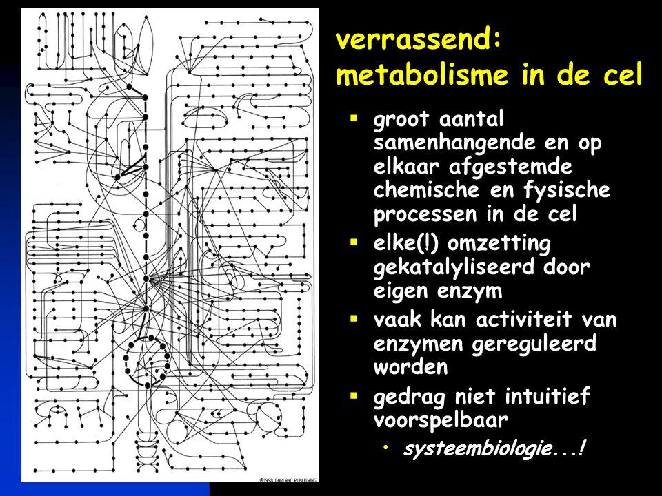 keerpunten-2 4-04 #18 een ander netwerk: eiwit interactie-netwerk in gistcel  eiwitten in gistcel 1.548 eiwitten 2.358 interacties één groot netwerk verschillende cel- compartimenten verschillende typen celfuncties schikowski fig 1 Schwikowski et al., Nature Biotech.