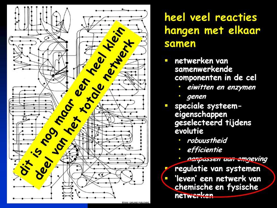 keerpunten-2 4-04 #22 conclusie  moleculaire basis van leven is simpel èn complex individuele chemische en fysische interacties simpel samenspel van heel veel reacties en interacties is complex netwerken van reacties en interacties gereguleerd in tijd en ruimte  het bijzondere van leven zit 'verborgen' in de complexiteit van de netwerken van interacties 'emergente eigenschappen' van netwerken…