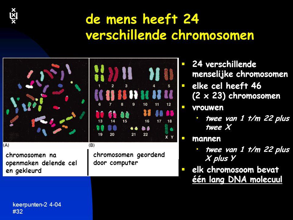 keerpunten-2 4-04 #33 macromoleculen: de sleutel tot leven simpele onvertakte ketens van eenvoudige chemische bouwstenen....
