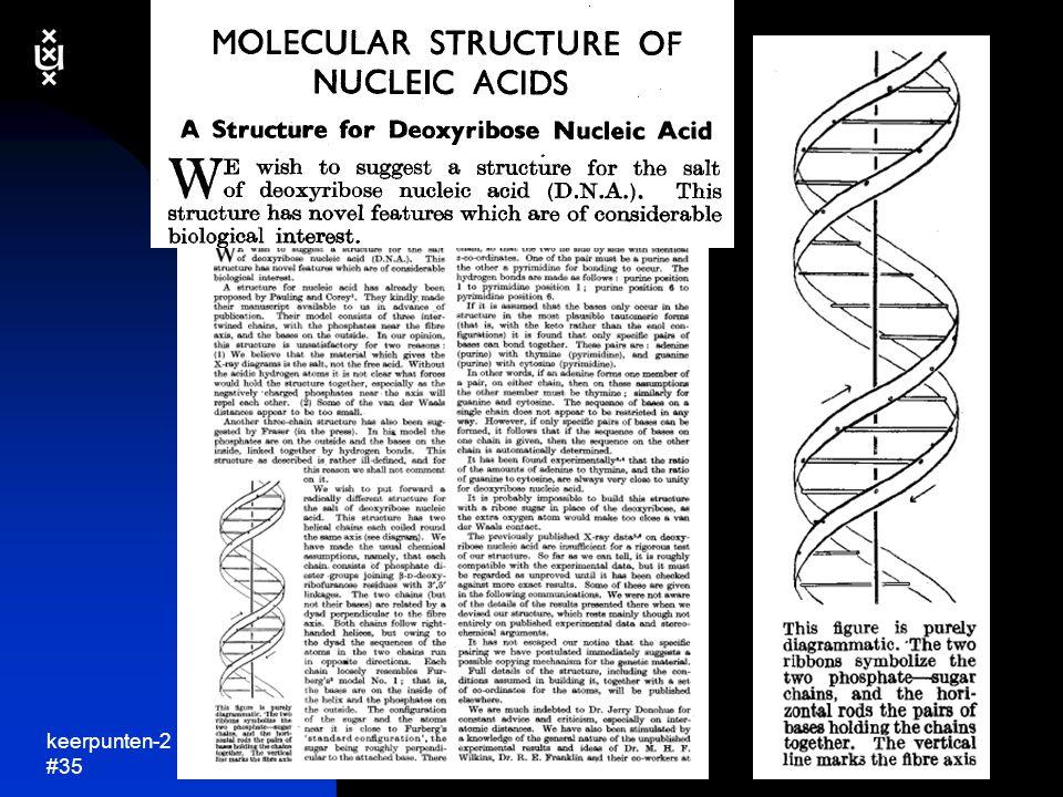 keerpunten-2 4-04 #36  DNA is keten van simpele chemische bouwstenen: nucleotiden menselijk DNA: drie miljard nucleotiden gemiddeld menselijk chromosoom is 130 miljoen nucleotiden lang  vier verschillende nucleotiden A = adenine T = thymine C = cytosine G = guanine  DNA keten is dubbel....