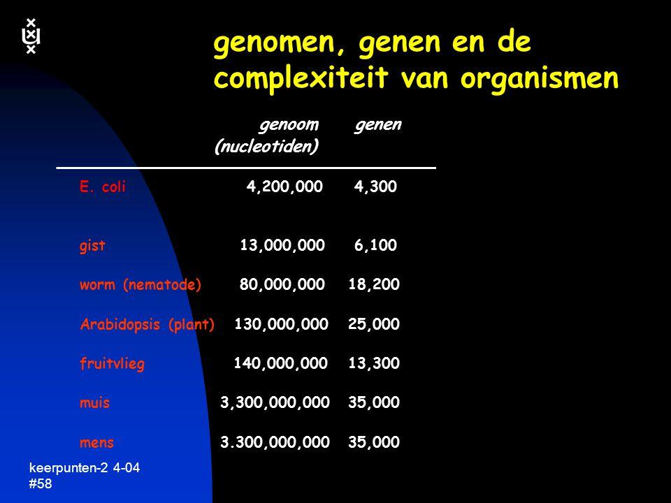 keerpunten-2 4-04 #59 geen simpele relatie complexiteit organisme, grootte van genoom en het aantal genen....