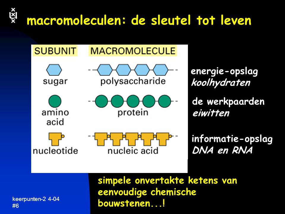 keerpunten-2 4-04 #7 wat maakt eiwitten zo bijzonder  heel breed scala van functies  specificiteit heel precies herkennen, binden en chemisch veranderen van andere moleculen  elk eiwit is lange onvertakte keten van aminozuren