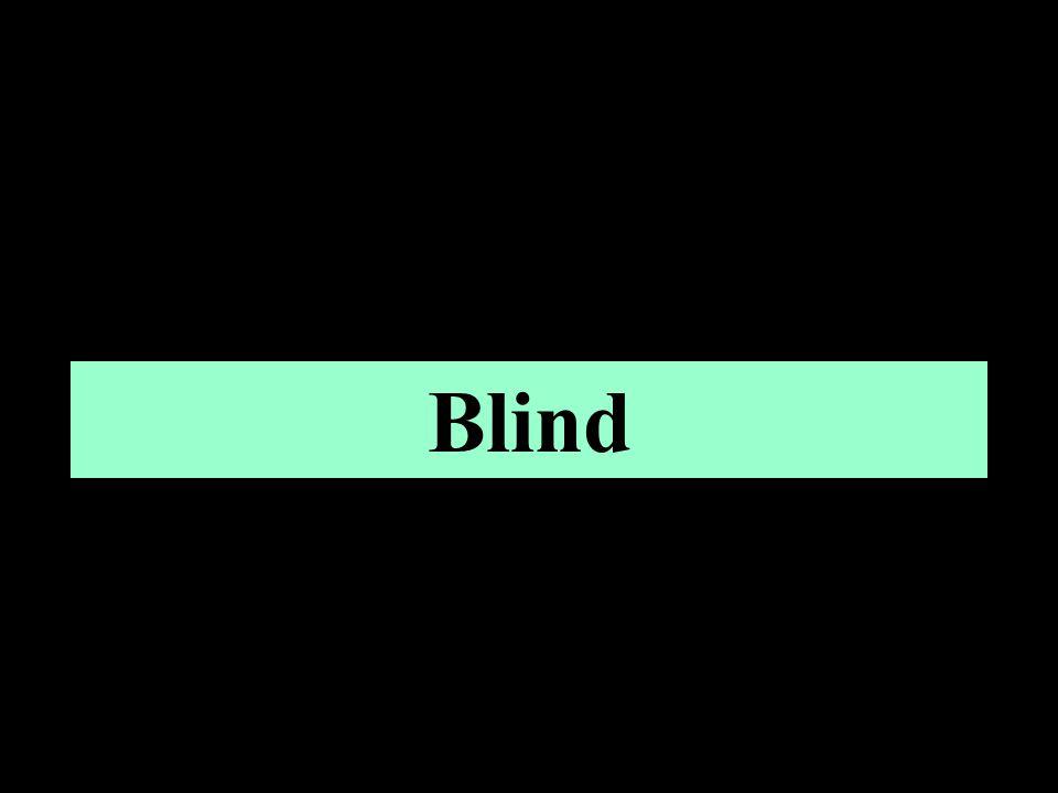 Omvang 2% van de totale bevolking in Nederland is visueel gehandicapt 3,8% als inclusief mensen die moeite hebben met krantenletters In Europa 11,5 miljoen mensen met een visuele handicap
