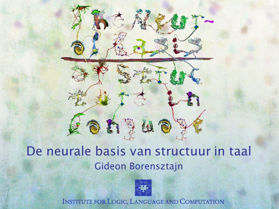 De neurale basis van structuur in taal Gideon Borensztajn