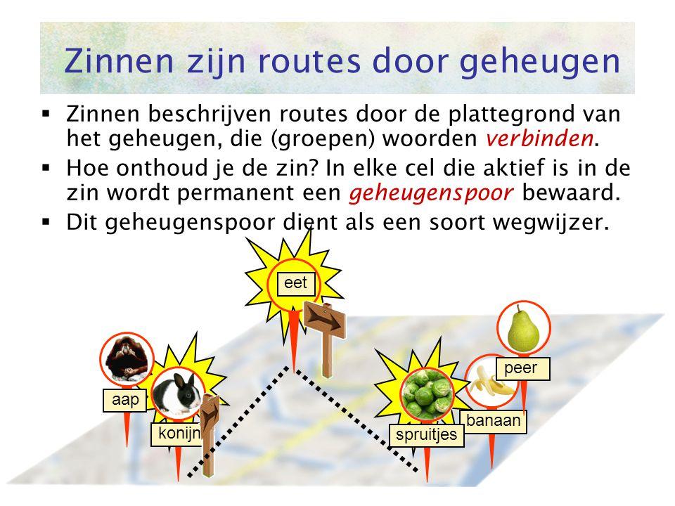 Zinnen zijn routes door geheugen  Zinnen beschrijven routes door de plattegrond van het geheugen, die (groepen) woorden verbinden.  Hoe onthoud je d