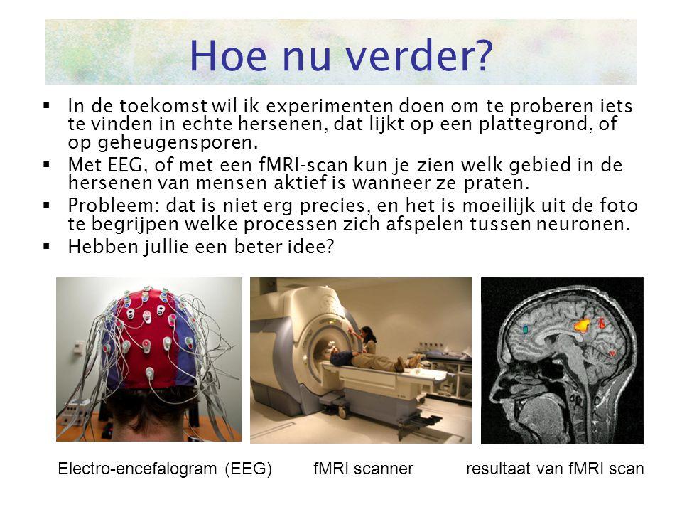  In de toekomst wil ik experimenten doen om te proberen iets te vinden in echte hersenen, dat lijkt op een plattegrond, of op geheugensporen.  Met E