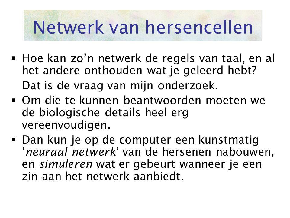 Netwerk van hersencellen  Hoe kan zo'n netwerk de regels van taal, en al het andere onthouden wat je geleerd hebt? Dat is de vraag van mijn onderzoek