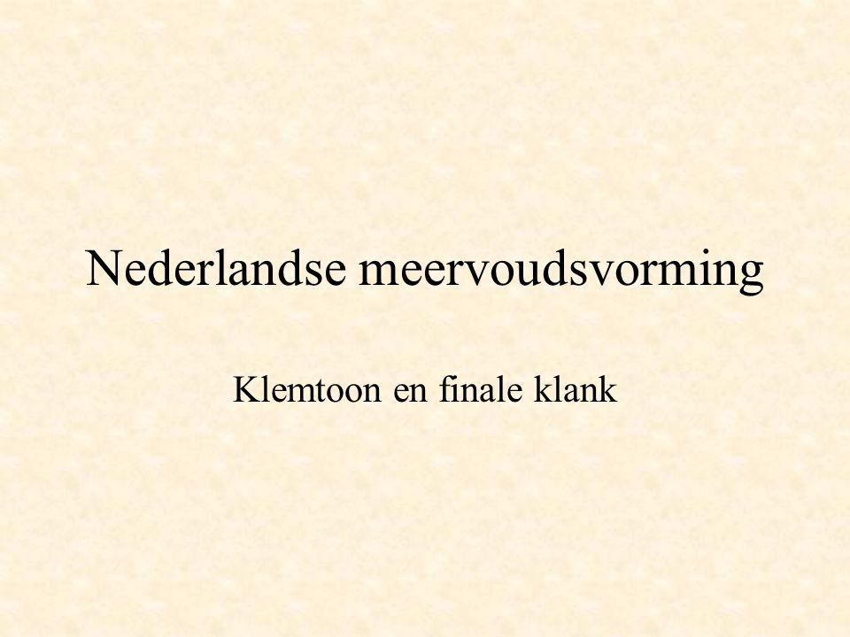 Nederlandse meervoudsvorming Klemtoon en finale klank