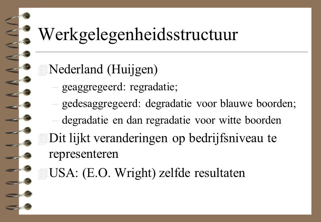 Werkgelegenheidsstructuur 4 Nederland (Huijgen) –geaggregeerd: regradatie; –gedesaggregeerd: degradatie voor blauwe boorden; –degradatie en dan regradatie voor witte boorden 4 Dit lijkt veranderingen op bedrijfsniveau te representeren 4 USA: (E.O.
