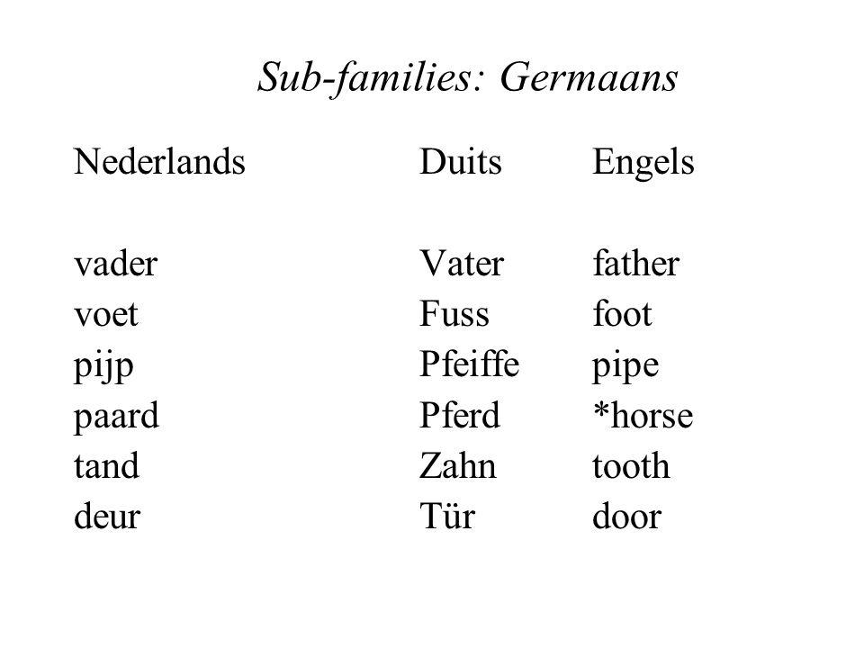 Sub-families: Germaans NederlandsDuitsEngels vaderVaterfather voetFussfoot pijpPfeiffepipe paardPferd*horse tandZahntooth deurTürdoor