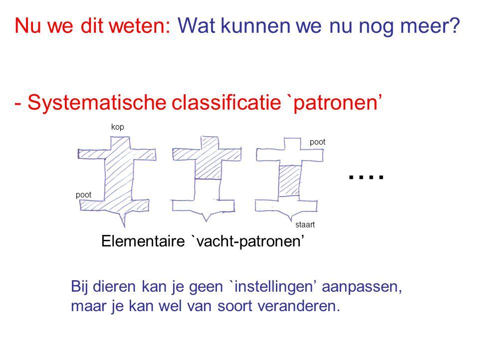 Nu we dit weten: Wat kunnen we nu nog meer? - Systematische classificatie `patronen'.... Elementaire `vacht-patronen' kop poot staart Bij dieren kan j
