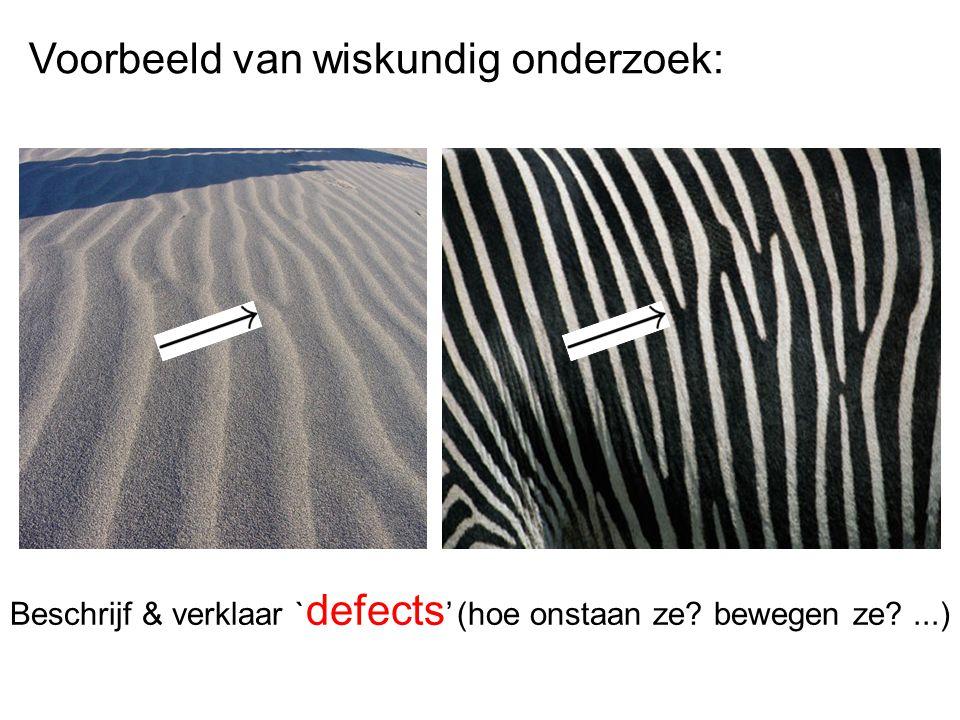 Voorbeeld van wiskundig onderzoek: Beschrijf & verklaar ` defects ' (hoe onstaan ze? bewegen ze?...)