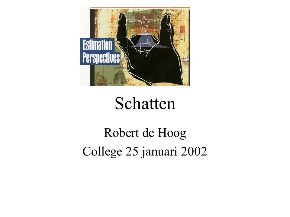 Schatten Robert de Hoog College 25 januari 2002