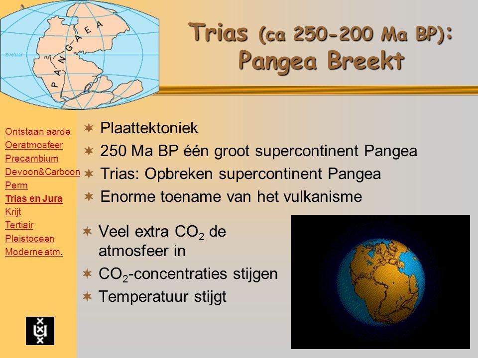 Trias (ca 250-200 Ma BP) : Pangea Breekt  Plaattektoniek  250 Ma BP één groot supercontinent Pangea  Trias: Opbreken supercontinent Pangea  Enorme toename van het vulkanisme  Veel extra CO 2 de atmosfeer in  CO 2 -concentraties stijgen  Temperatuur stijgt Ontstaan aarde Oeratmosfeer Precambium Devoon&Carboon Perm Trias en Jura Krijt Tertiair Pleistoceen Moderne atm.