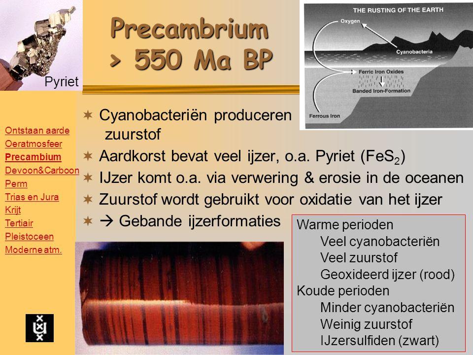 Precambrium > 550 Ma BP  Cyanobacteriën produceren zuurstof  Aardkorst bevat veel ijzer, o.a.