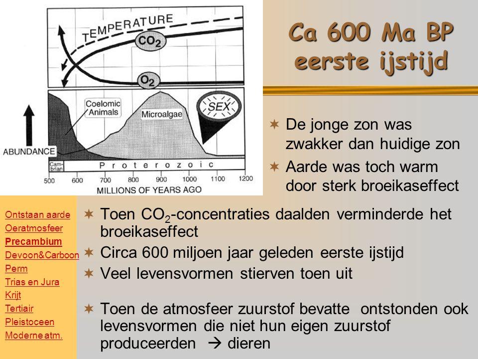 Ca 600 Ma BP eerste ijstijd  Toen CO 2 -concentraties daalden verminderde het broeikaseffect  Circa 600 miljoen jaar geleden eerste ijstijd  Veel levensvormen stierven toen uit  Toen de atmosfeer zuurstof bevatte ontstonden ook levensvormen die niet hun eigen zuurstof produceerden  dieren  De jonge zon was zwakker dan huidige zon  Aarde was toch warm door sterk broeikaseffect Ontstaan aarde Oeratmosfeer Precambium Devoon&Carboon Perm Trias en Jura Krijt Tertiair Pleistoceen Moderne atm.