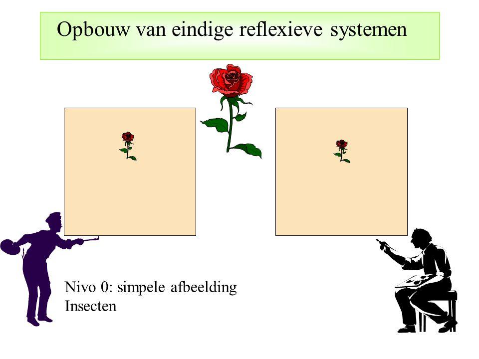 Nivo 0: simpele afbeelding Insecten Opbouw van eindige reflexieve systemen