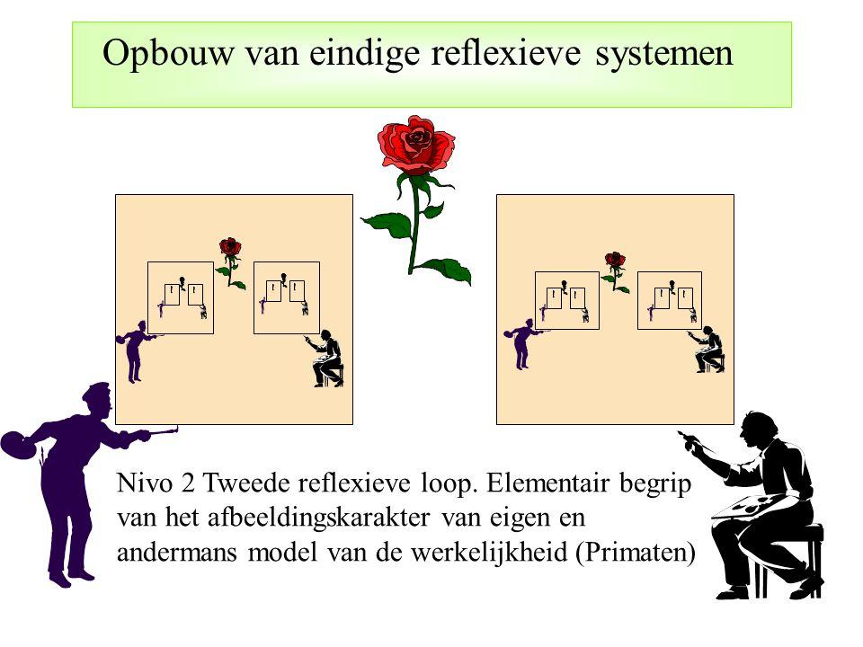 Nivo 2 Tweede reflexieve loop. Elementair begrip van het afbeeldingskarakter van eigen en andermans model van de werkelijkheid (Primaten)