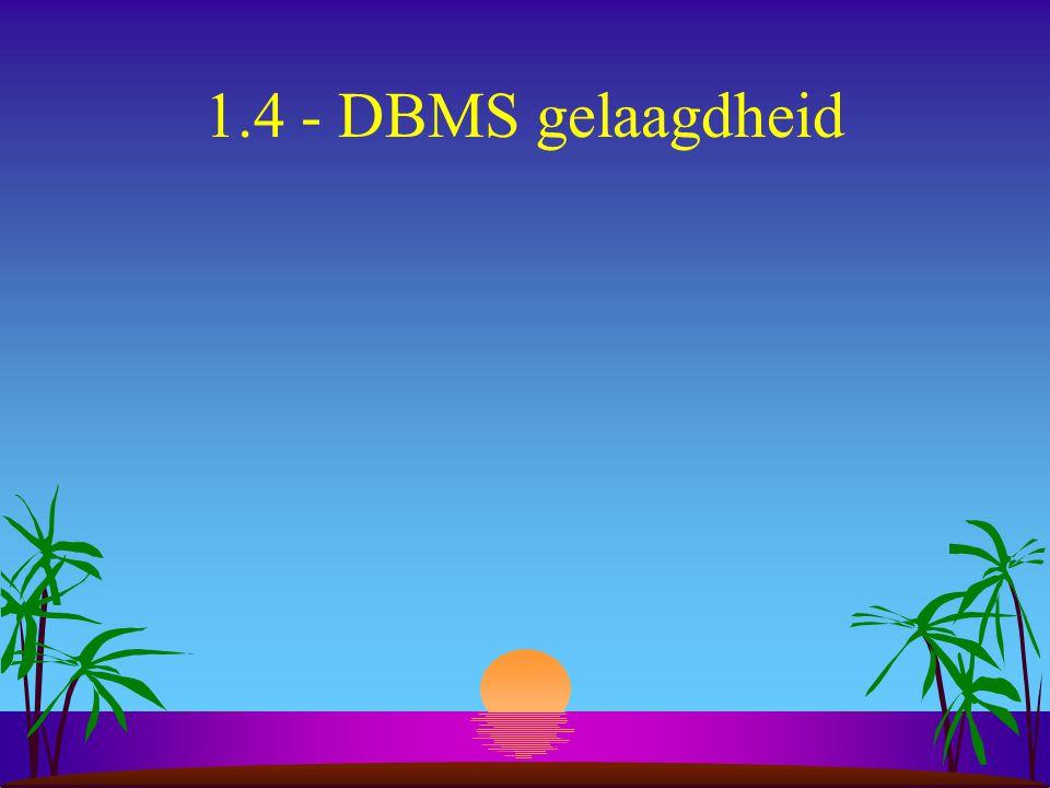 1.4 - DBMS gelaagdheid