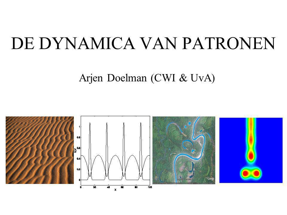 DE DYNAMICA VAN PATRONEN Arjen Doelman (CWI & UvA)